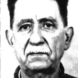 Ion Mihalache – 55 de ani de la moarte
