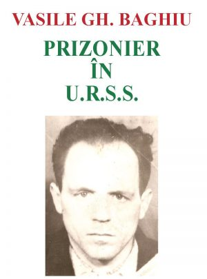 Prizonier în URSS