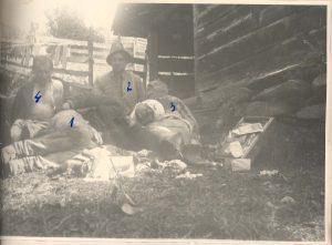 Membri ai grupului Șușman după capturarea lor de către Securitate